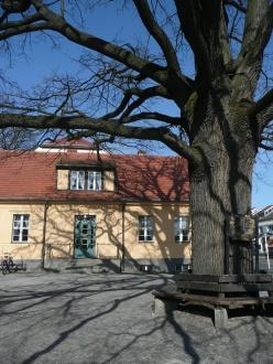 Heimatmuseum & Friedenseiche 2